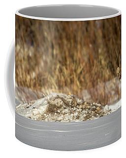 Yampa Glare  Coffee Mug