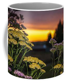 Yarrow At Sunset Coffee Mug