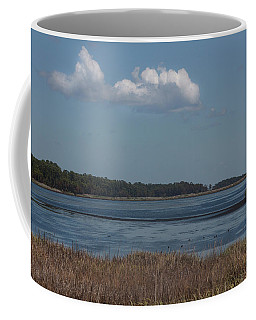 Yawkey Wildlife Reguge - View From The Causeway Coffee Mug by Suzanne Gaff