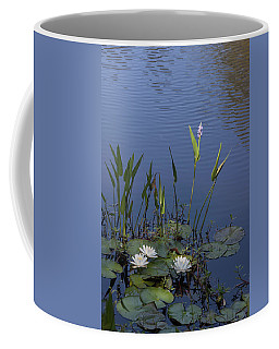 Yawkey Wildlife Reguge Water Lilies With Rare Plant Coffee Mug by Suzanne Gaff