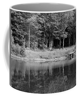 Coffee Mug featuring the photograph Ye Old Swimming Hole by Rick Morgan