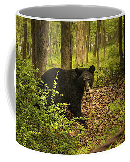Yearling Black Bear Coffee Mug