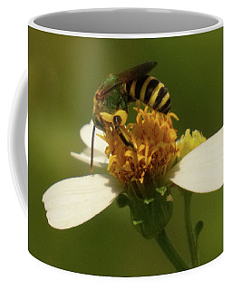Yellow And Black Bee On Flower. Coffee Mug