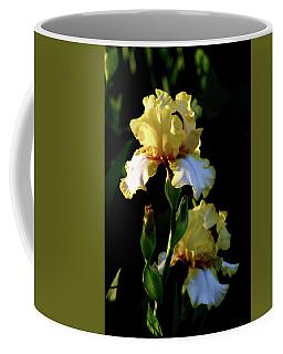 Yellow And White Irises 6681 H_2 Coffee Mug