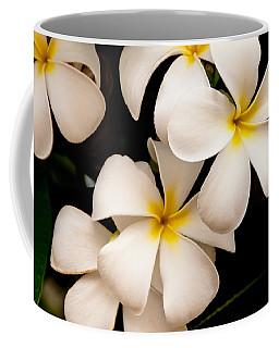 Yellow And White Plumeria Coffee Mug