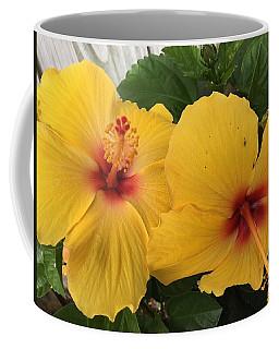 Yellow Beauties Coffee Mug