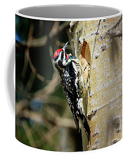 Yellow-bellied Sapsucker 2 Coffee Mug by Gary Hall