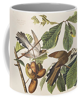 Yellow Billed Cuckoo Coffee Mug
