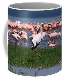 Yellow Billed Stork Coffee Mug