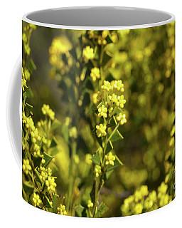 Yellow Blooms Coffee Mug by Cassandra Buckley