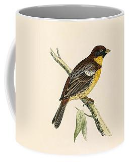 Yellow Breasted Bunting Coffee Mug