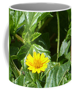 Yellow Caribbean Flower Coffee Mug
