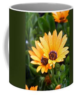 Yellow Colored Petals Coffee Mug
