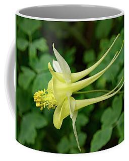 Coffee Mug featuring the photograph Yellow Columbine Profile by Jean Noren