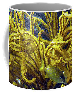 Coffee Mug featuring the photograph Yellow Coral Dance by Francesca Mackenney