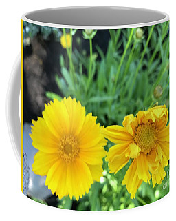 Yellow Coreopis Coffee Mug