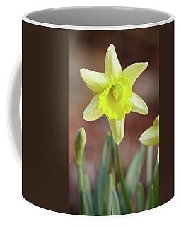 Yellow Daffodil Coffee Mug
