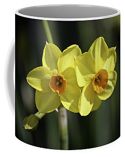 Yellow Daffodils 2 Coffee Mug