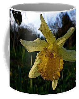 Yellow Daffodils 5 Coffee Mug by Jean Bernard Roussilhe