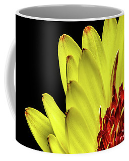 Yellow Daisy Peeking Coffee Mug