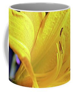 Yellow Day Lily Coffee Mug