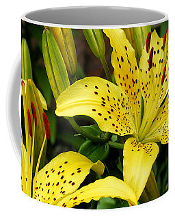 Coffee Mug featuring the photograph Yellow Lilies by William Selander