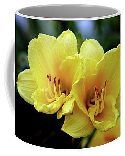 Yellow Daylilly 0204 H_2 Coffee Mug
