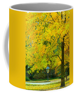 Yellow Drapes Coffee Mug