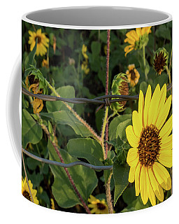Yellow Flower Escaping From A Barb Wire Fence Coffee Mug