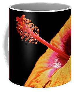 Coffee Mug featuring the photograph Yellow Hibiscus by Marie Hicks