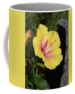Yellow Hibiscus Coffee Mug by Suhas Tavkar