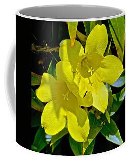 Yellow Jessamine At Pilgrim Place In Claremont-california Coffee Mug