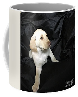 Yellow Lab Puppy Sadie Coffee Mug by Jeffrey Koss