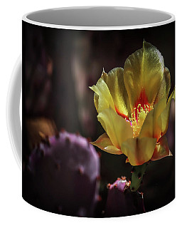 Coffee Mug featuring the photograph Yellow N Red by Elaine Malott