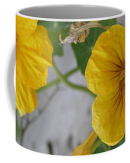 Yellow Nasturtium Coffee Mug
