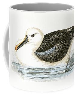 Yellow Nosed Albatross Coffee Mug