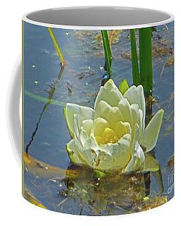 Yellow Nymphaea Alba Damselfy Coffee Mug