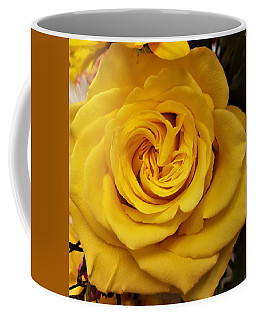 Yellow Ochre Rose Coffee Mug by Jim Harris