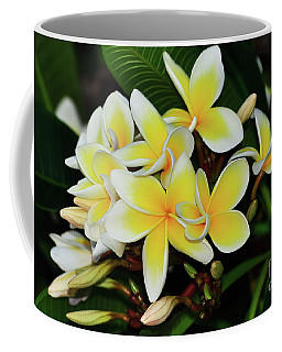 Coffee Mug featuring the photograph Yellow Plumeria By Kaye Menner by Kaye Menner