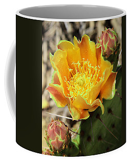 Yellow Prickly Pear Cactus Coffee Mug