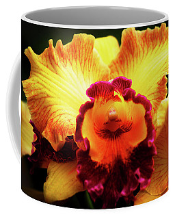 Coffee Mug featuring the photograph Yellow-purple Orchid by Anthony Jones