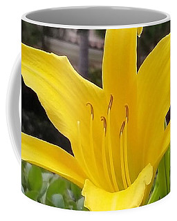 Yellow Renaissance Lily Coffee Mug