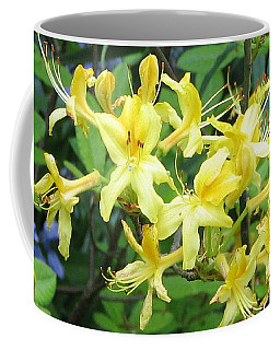 Yellow Rhododendron Coffee Mug by Carla Parris