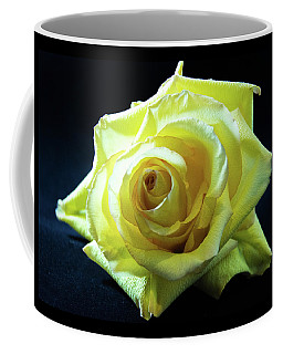 Yellow Rose-7 Coffee Mug