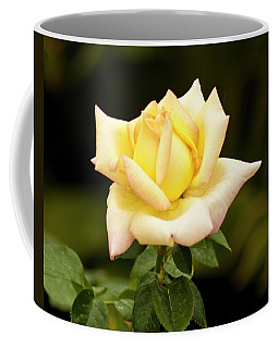 Coffee Mug featuring the photograph Yellow Rose by Bill Barber