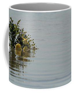 Yellow Roses Emerging From The Sea Coffee Mug