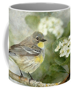 Yellow-rumped Warbler And Hawthorne Blossoms Coffee Mug