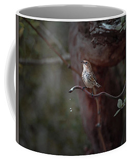 Yellow-rumped Warbler At Water Spout Coffee Mug