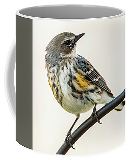 Coffee Mug featuring the photograph Yellow-rumped Warbler by Jim Moore