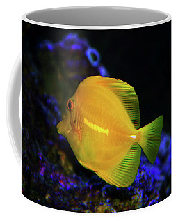 Coffee Mug featuring the photograph Yellow Tang by Anthony Jones